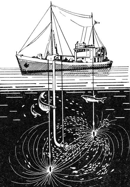 Рис. 141. Схема действия электродов и рыбонасоса