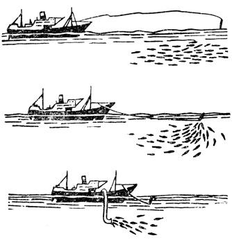Рис. 142. Электрод выстреливается и, привлекая рыб, подводит их к судну